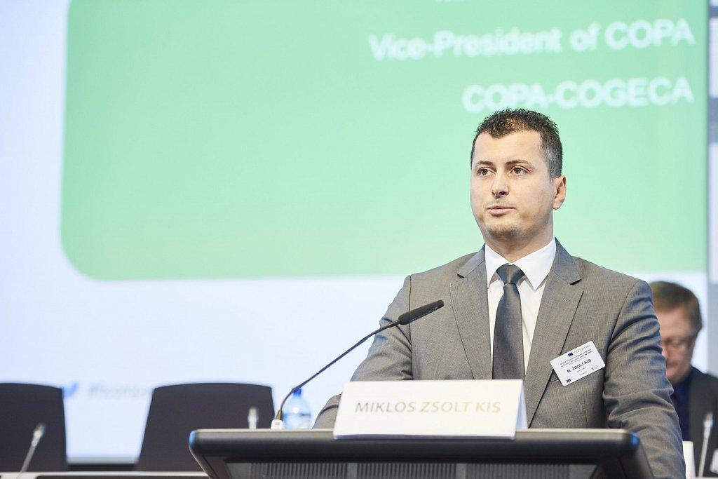 Mr Miklos Zsolt Kis